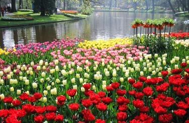botanical-gardens