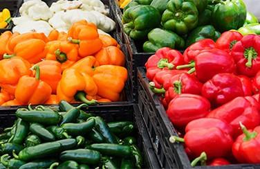 Neighborhood-13--Farmers-Market-501-x-282