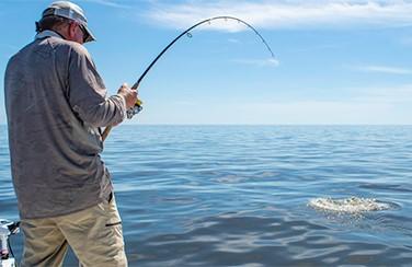 Gallery 8 Fishing 805 x 453