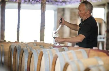 12 Winery 501 x 282