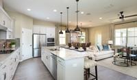 tessa open home design_WB