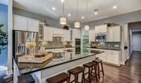 Hampton Lake Ravenna Loft Kitchen-3